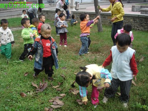 小学生树叶粘贴画图片公鸡